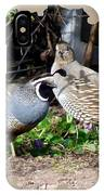 Quail Mates IPhone Case
