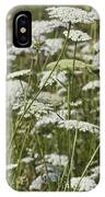 Queen Anne's Lace Fields Forever IPhone Case