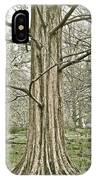 Quiet Tree IPhone Case