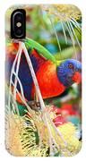 Rainbow Lorikeet 2am-8374 IPhone Case