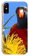 Rainbow Lorikeet Pose IPhone Case