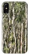 Rainy Season Reflections IPhone Case