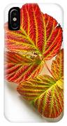 Raspberry Leaves In Autumn IPhone Case