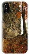Raven Rock And Autumn Colored Beech IPhone Case