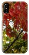 Red And Green Prior X-mas IPhone Case