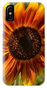 Red And Yellow Sunflower IPhone Case