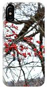 Red Berries White Sky IPhone Case