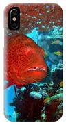 Red Close-up Grouper IPhone Case