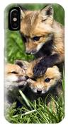 Red Fox Babies - D006647 IPhone Case