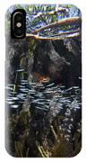Red Mangrove Rhizophora Mangle Aerial IPhone Case