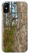 Red Pine Forest IPhone Case