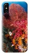 Red Sea Fan And Soft Coral In Raja IPhone Case
