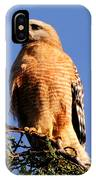 Pismo Beach Red Shoulder Hawk IPhone Case