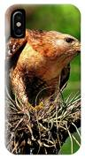 Red-shouldered Hawk With Breakfast IPhone X Case
