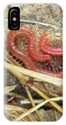 Red Soil Centipede - Strigamia IPhone Case