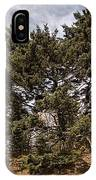 Red Spruce On Whitetop Mountain IPhone Case