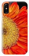 Red Sunflower II  IPhone Case