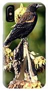 Redwinged Blackbird II IPhone Case