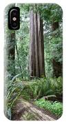 Redwood National Park, California IPhone Case