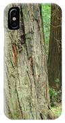 Redwood Trees Art Prints Big California Redwoods IPhone Case