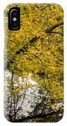 Reflecting Autumn Tree IPhone Case