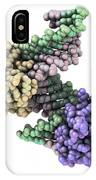 Ribonuclease With Rna/dna Hybrid IPhone Case