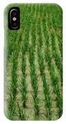 Rice Field IPhone Case