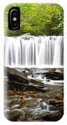 Ricketts Glen Waterfall Oneida IPhone Case