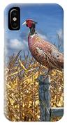 Ringneck Pheasant IPhone Case