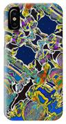 Rio Carnival Fantasy IPhone Case