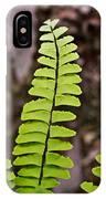 Rising Fern 1 IPhone Case