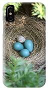 Robins Nest And Cowbird Egg IPhone Case