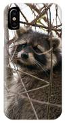 Rocky Raccoon IPhone Case