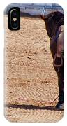 Rodeo 11 IPhone Case