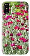 Rose Campion (lychnis Coronaria) IPhone Case