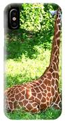Rothschild Giraffe IPhone Case