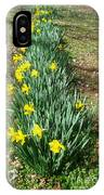 Row Of Daffodils IPhone Case