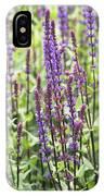 Salvia Nemorosa 'caradonna' IPhone Case