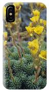 Saxifrage Flowers IPhone Case