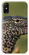 Scales For Breakfast IPhone Case