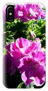 Scented Geraniums IPhone Case
