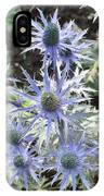 Sea Holly IPhone Case