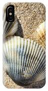 Seashells V2 IPhone Case