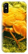 Sem Of A Bed Bug IPhone Case