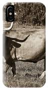 Sepia Longhorn Cow IPhone Case
