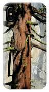 Sequoia And El Capitan IPhone Case