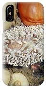 Shaggy Mouse Nudibranch IPhone Case