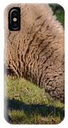 Sheep 3 IPhone Case