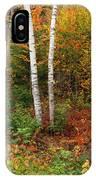 Shelburne Birches IPhone Case