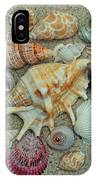 Shell Collection 2 IPhone Case